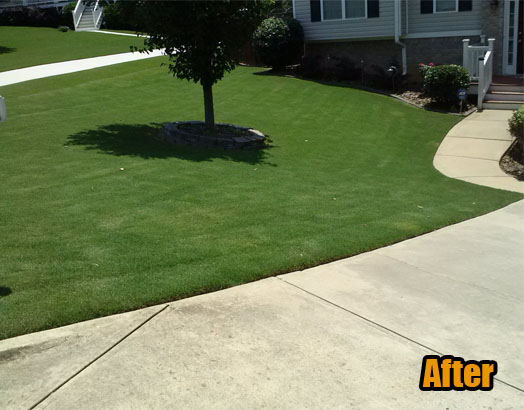 Lawn Care Service Woodstock Ga