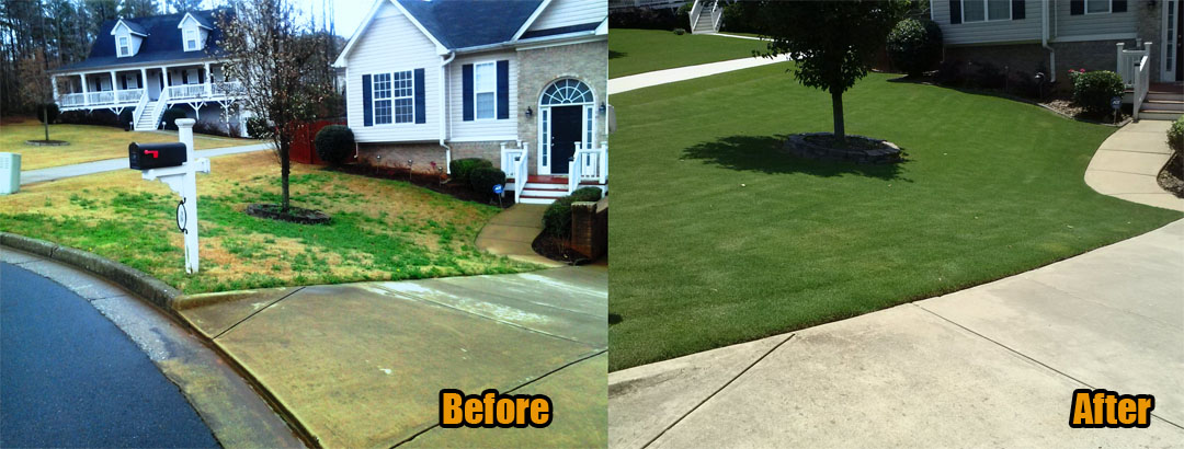 Lawn Care Woodstock Ga
