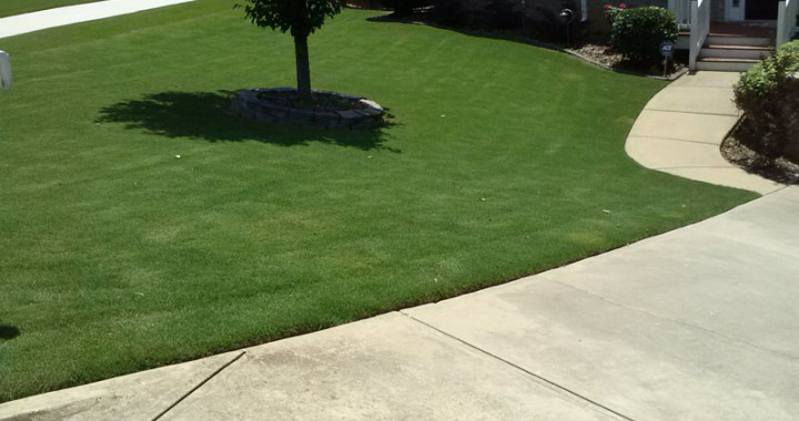 Quality Lawn Care Woodstock Ga